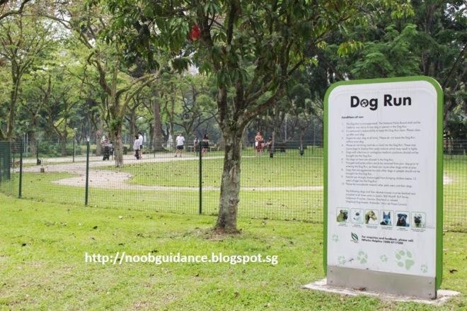 bishan dog run